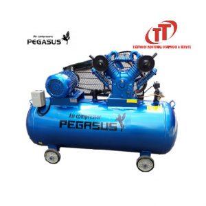máy nén khí Pegasus 10 Hp 500l